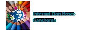 logo de Internat Don Bosco de Ganshoren – Bruxelles